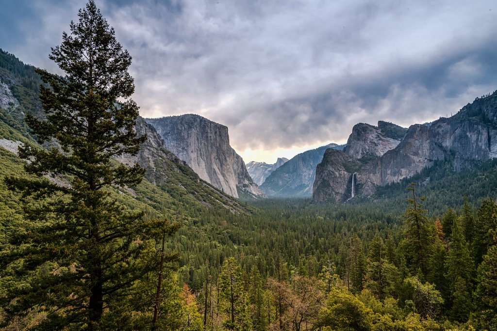 Yosemite treasures